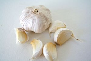 Garlic - Photo  San Diego Foodstuff