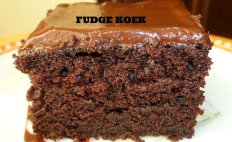 fudge cake 4